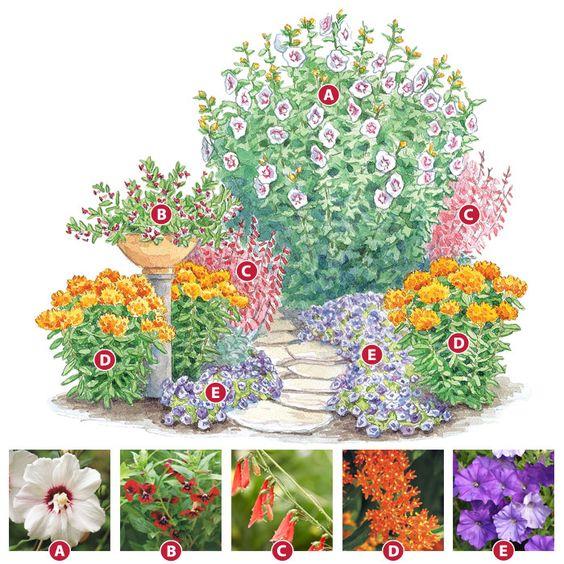 Colibris jardin de colibri and plantes on pinterest for Jardin floral design