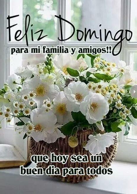Domingo Feliz Domingo Feliz Domingo Frases Saludos De Buenos Dias