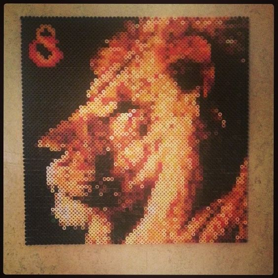 Lion perler beads by parldags