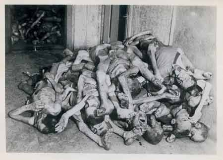 Holocaust concentration camps essays
