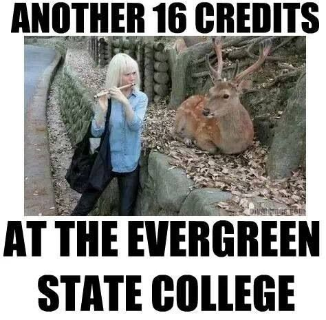 Image result for Course Catalogue at Evergreen State College