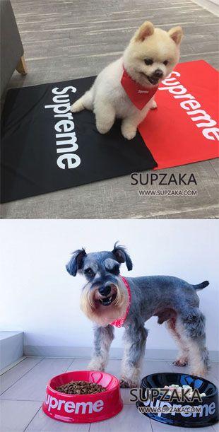 シュプリーム ペット用ひんやりマット Supreme 犬用食器 フードボウル ペット用品 人気 ドッグベッド 犬 ペット用品