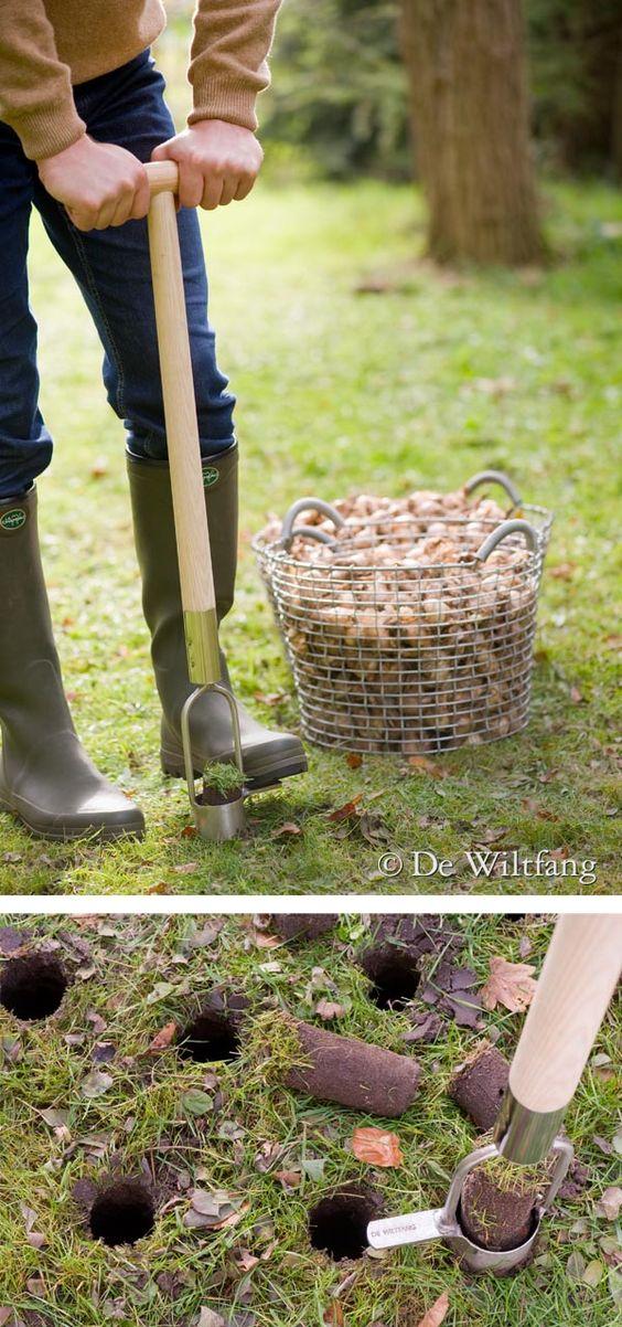 makkelijk bloembollen poten  www.dewiltfang.nl/herfst/bollen-poten/bollenpriemen-met-steel/    planting flower bulbs the easy way