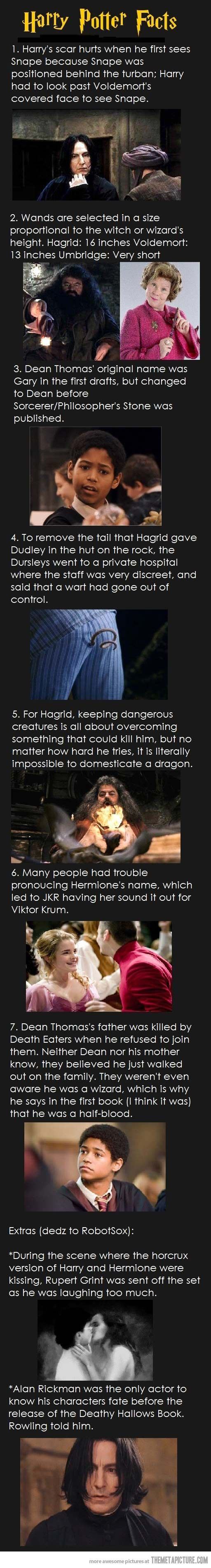Facts you probably didn't know about Harry Potter…