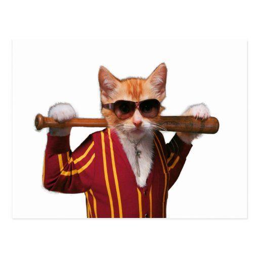 Gangster Cat Orange Cat Funny Cat Postcard Zazzle Com Crazy Cats Orange Tabby Cats Orange Cat