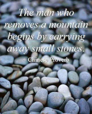 The man who removes a mountain begins by carrying away small stones.: