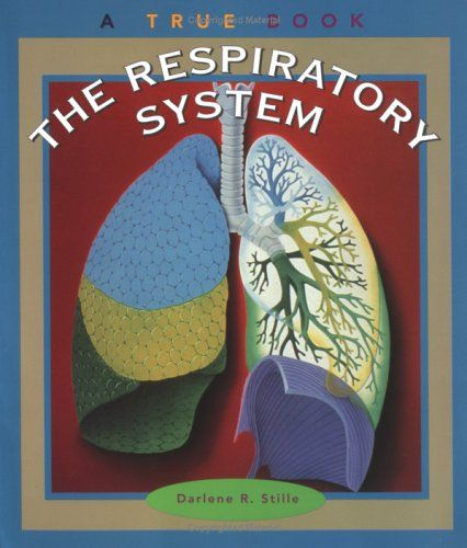 respiratory system project The inhaled corticosteroids used in respiratory medicine are in fact synthetic agonists of the glucocorticoid receptor (gr), a nuclear hormone receptor in the same family as the androgen, progesterone and mineralocorticoid receptors.