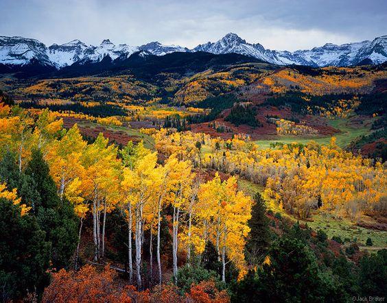 Fall colors, Colorado