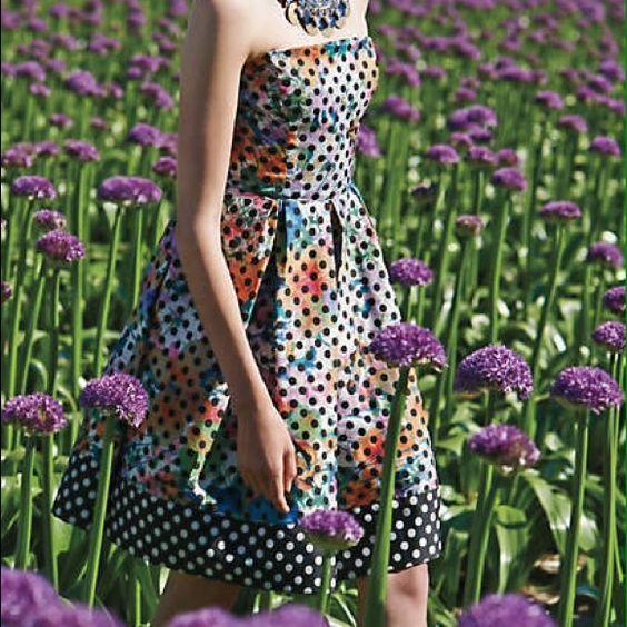 Lavendel Dress by Corey Lynn Calter Fun dress Anthropologie Dresses Midi