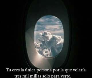 Tu Eres La Única Persona Por La Que Volaría Tres Mil Millas Solo Para Verte