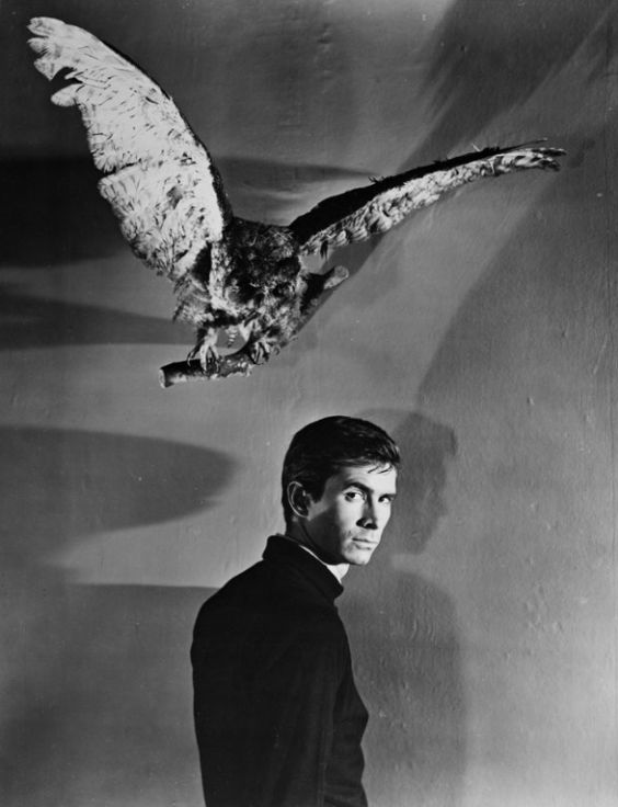 alfred hitchcock and the making of psycho anthony perkins alfred hitchcock and the making of psycho anthony perkins norman bates and acting career