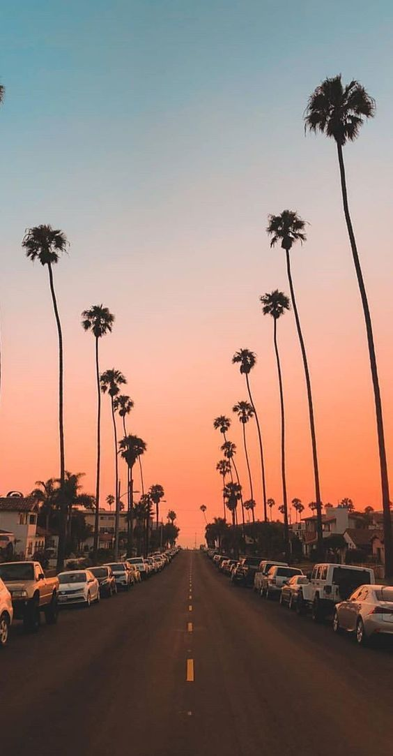 45 Free Beautiful Summer Wallpapers For Iphone The Chic Pursuit In 2020 Iphone Wallpaper Images Wallpaper Iphone Summer View Wallpaper