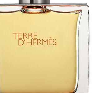 Le Critique de Parfum: TERRE D'HERMES PARFUM