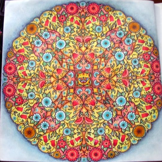 Mandala Butterfly Secret Garden Borboleta Jardim Secreto Johanna Basford