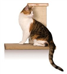 """Sky Climber  - Cats love vertical territory - the higher the better. It gives them a feeling of security and mastery over their environment. The Sky Climber allows the cat to jump to an acceptable resting perch where it can nap or just survey the home territory. All cats love high places, but it is especially important that multi-cat families provide a number of wall perches.  """"Like"""" or """"Pin"""" this and use discount code """"Pin5"""" for 5% off."""