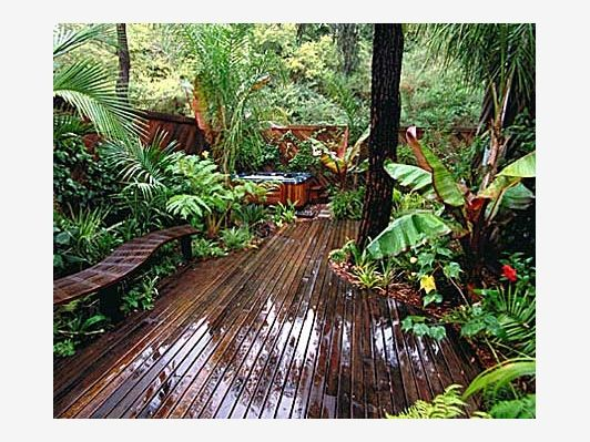 Backyard tropical rain forest home and garden design for Forest landscape design