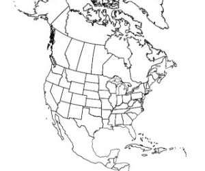 Outline Map of North America | North america map, Map of ...
