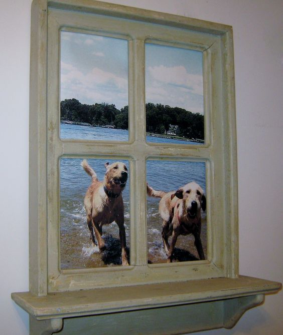 Shabby chic faux windows photo taken at dog beach in for Shabby chic dog