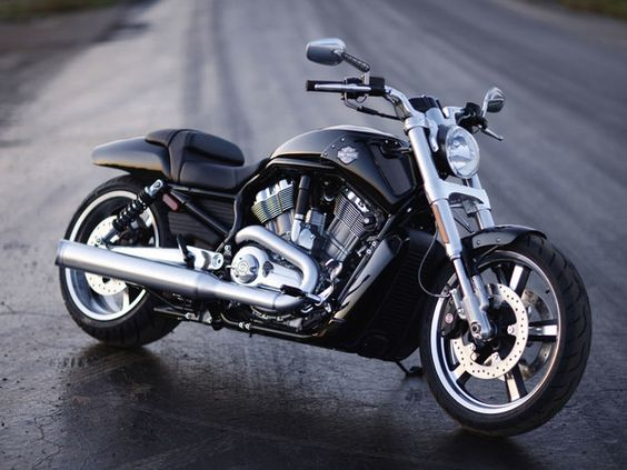harley davidson vrscf v rod muscle 2010 #bikes #motorbikes #motorcycles #motos #motocicletas