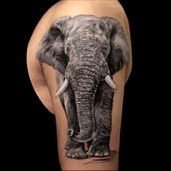 Pinterest the world s catalogue of ideas for Fake tattoo sleeves toronto