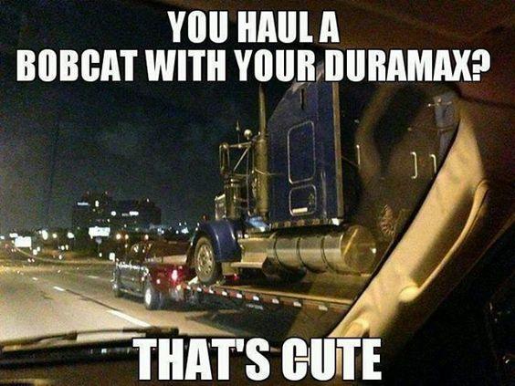 162985d1378273919-funny-truck-memes-bobcat.jpg 640×480 пикс
