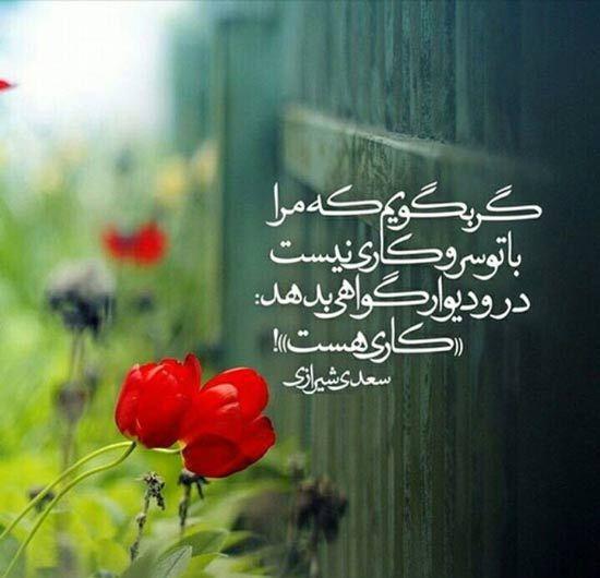 شعر عاشقانه سعدی Persian Poetry Persian Poem Prayer Stories