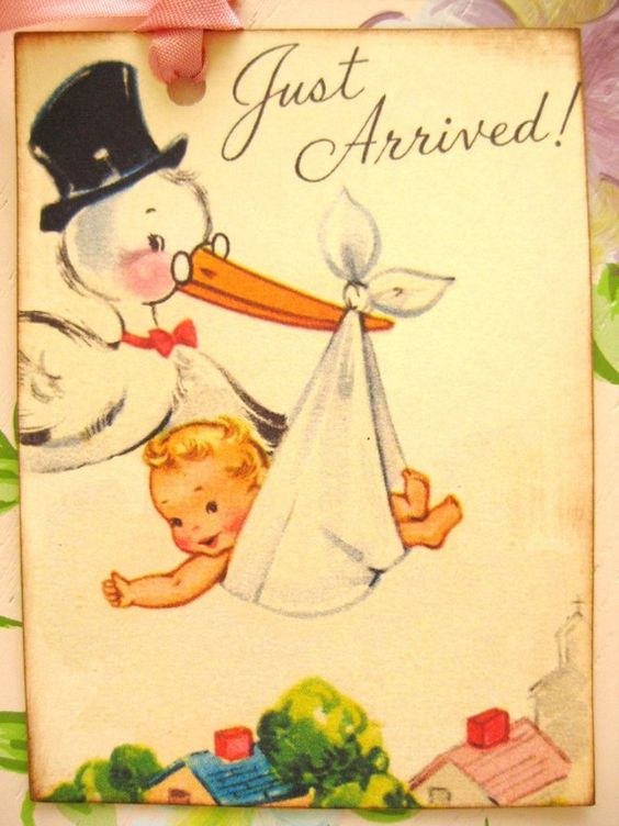 Stork and baby Vintage Images Pinterest – Vintage Birth Announcement