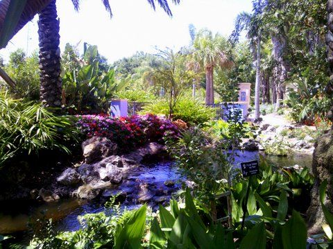 Superieur Florida Botanical Gardens, Largo, FL | Herb Garden | Pinterest | Florida  Botanical Gardens