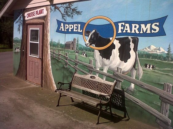 Near Ferndale, WA -Friend Ruth Appel and her family make wonderful cheese and Appel Farms!