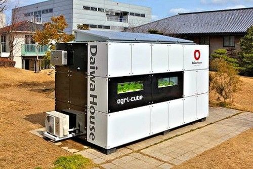 The Agri-Cube is a line of prefabricated hydroponic vegetable factories, designed by Daiwa House, Japan's largest homebuilder, for housing complexes, hotels and top-end restaurants.