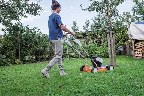 Rasenpflege Tipps Fur Einen Schonen Rasen Rasenpflege Rasen Gruner Rasen