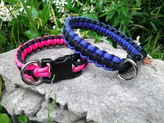 Dog collars paracord and collars on pinterest for Paracord leash instructions