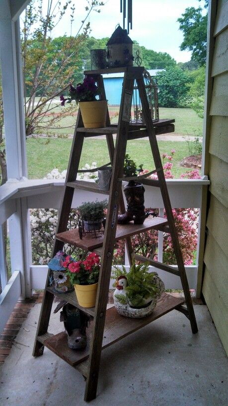 Old wooden ladder used on porch cute birds for Old wooden ladder projects