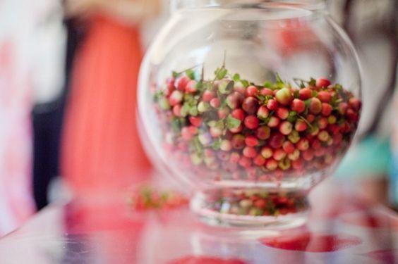 une obsession passagère pour les radis !