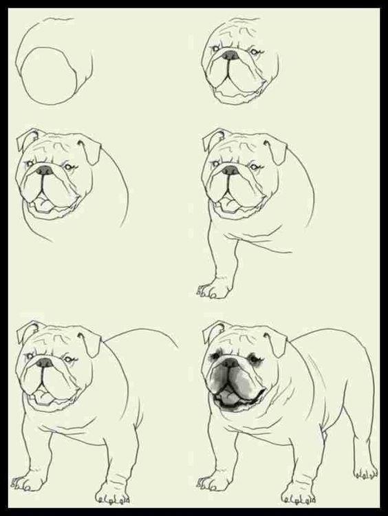 How To Draw A Dog Step By Step Easily 35 Ideas Drawing Ck Zeichnungen Dog Draw Drawing Easily Ideas Step Zei Zeichnungen Zeichnen