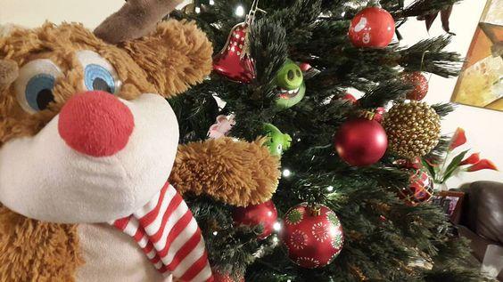 Feliz Navidad! #Renito