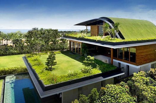Terrific No Cost Rooftop Garden Green Roofs Strategies Rooftop Gardening Is Abso In 2020 Rooftop Garden Small Rooftop Garden Beautiful Roofs