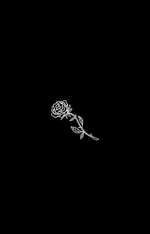 Black And White Rose Cover Iphone 12 Soft By Superjamba Wallpaper Iphone Tumblr Grunge Black Roses Wallpaper White Roses Wallpaper