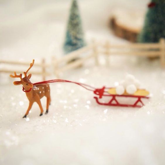 A tiny sled so full of fun.  #deer #crafts #christmas #adorable #gift #cute #love #instagood #happy #selfie #fun #tiny #fairygarden #fall