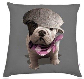 d co and d coration on pinterest. Black Bedroom Furniture Sets. Home Design Ideas