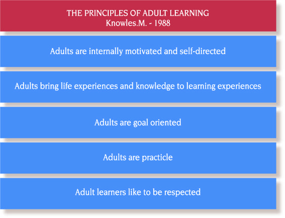 action adult andragogy applying in learning modern principle