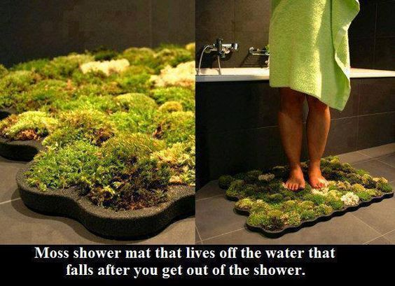 DIY living moss bath mat that survives off water from your shower.  Calls for materials I have no idea where to find, though.