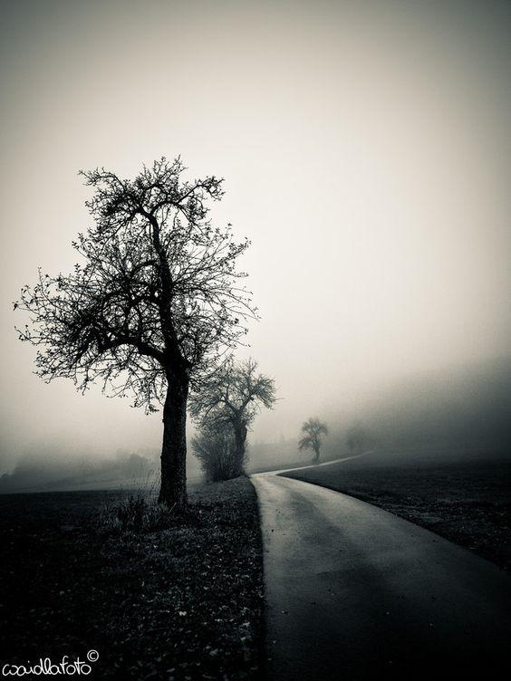 Untitled by Franz Bogner on 500px