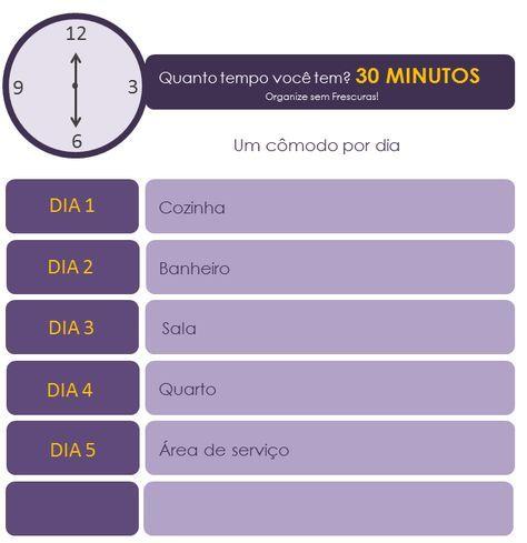Infográfico faxina todo dia gastando 30 minutos