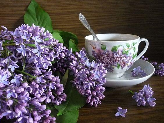 ♫ Lilacs & tea: