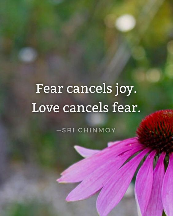 #srichinmoy#inspiration#yoga #meditation#happiness#prayer#joy#onneness#heart#love#harmony#quotes#peaceofmind#bekind#wisdomquotes#srichinmoyquotes#spiritualjourney#innerwisdom#dailyinspiration