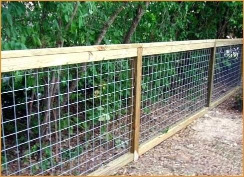 Chicken Wire Fence For Garden Chicken Wire Fence How To Install