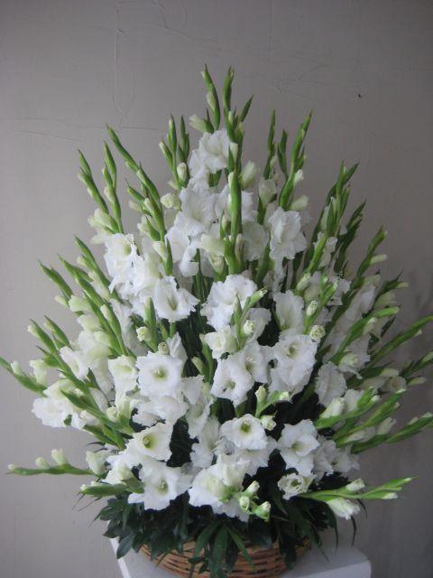 Canasta con Gladiolas Blancas #Arreglosflorales