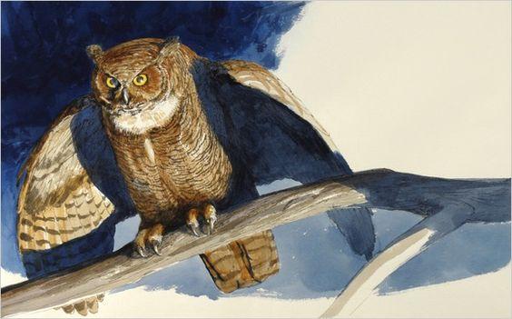 from Owl Moon illustrated by John Schoenherr, written by Jane Yolen