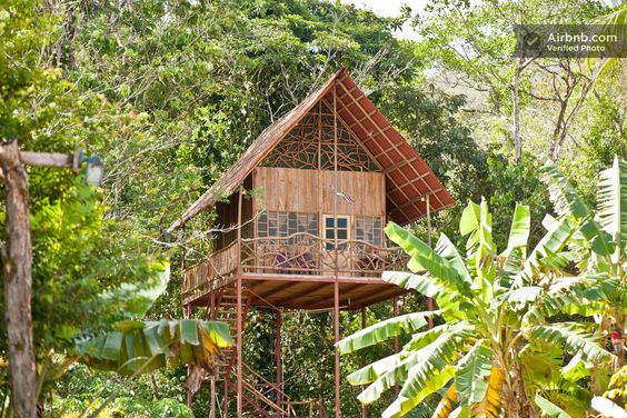 Rainforest Tree House w Hot Springs - Airbnb Costa Rica